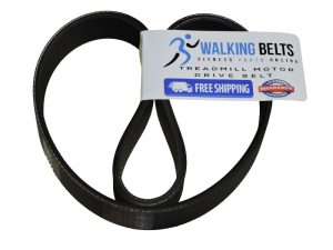 Sole F63 (563812) (2014) Treadmill Drive Belt + Free 1 oz. Lube